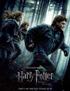 Harry Potter and the Deathly Hallows: Part 1 (2010) แฮร์รี่ พอตเตอร์ กับ เครื่องรางยมฑูต ภาค 7.1