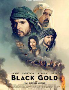 Black Gold (2011) แบล็ค โกลด์ ล่าขุมทองดับตะวัน